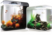 BiOrb Aquariums & Fish Tanks